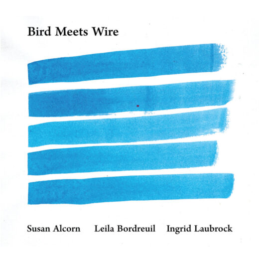 Bird Meets Wire, blue horizontal lines, white background